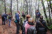 Andar per funghi – uscita nei boschi con il micologo Vizzini – sabato 11 ottobre 2014