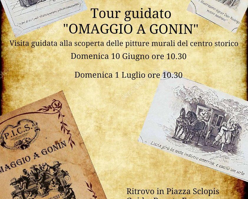 Tour dedicati a Francesco  Gonin  – domenica 10 giugno e domenica 1 luglio 2018