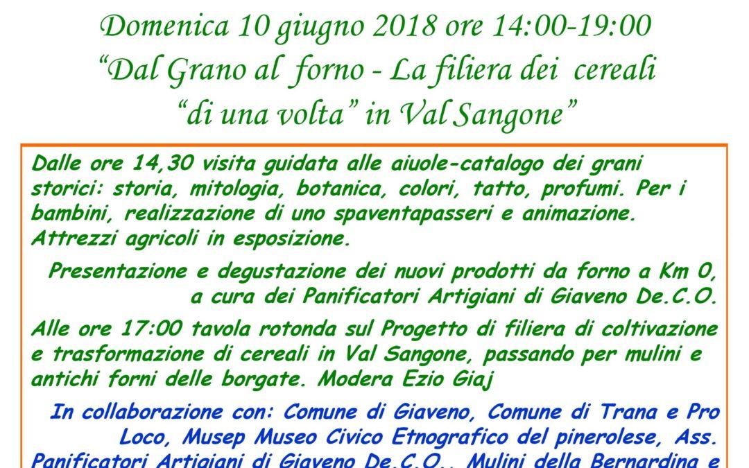 """""""Dal grano al forno  – la filiera dei cereali"""" – Giardino Botanico Rea  Trana  domenica 10 giugno 2018"""