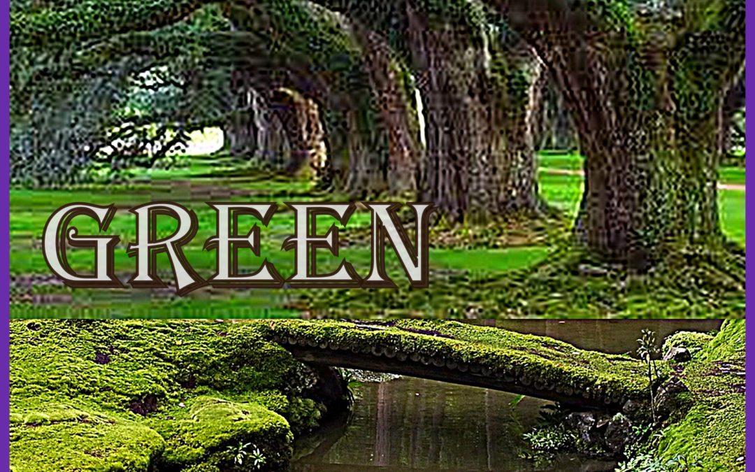 Green – Spettacolo Natalizio di ArteInMovimento – venerdì 21 dicembre 2018