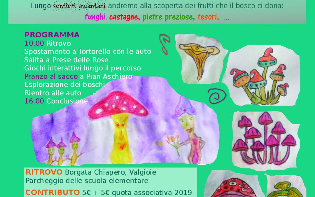 Appuntamenti per Fungo in Festa 2019